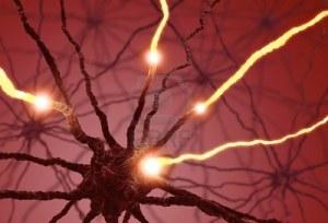 10717193-neuronas-interconectadas-transferir-informacion-con-impulsos-electricos