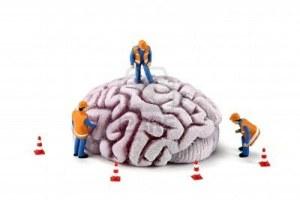7732681-imagen-conceptual-de-trabajadores-de-la-construccion-en-miniatura-inspeccionando-un-cerebro-hay-prec