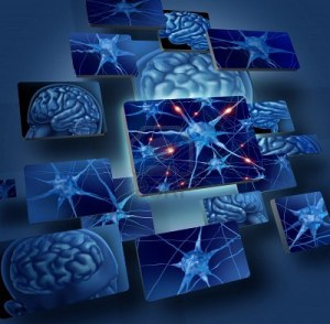13876623-brain-neurons-concepts-as-human-brain-medical-symbol-represented-by-geometric-windows-close-up-of-ne