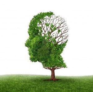 13559413-perdida-de-la-funcion-cerebral-y-el-tratamiento-de-la-demencia-y-el-alzheimer.jpg