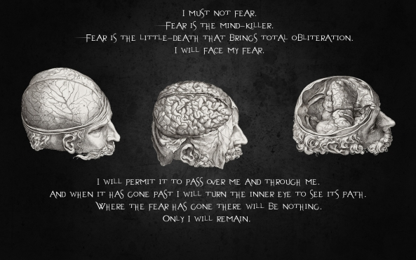 quotes_brain_desktop_1920x1200_hd-wallpaper-769350